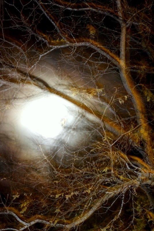 Halloween Night Sky